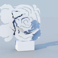 white rose one